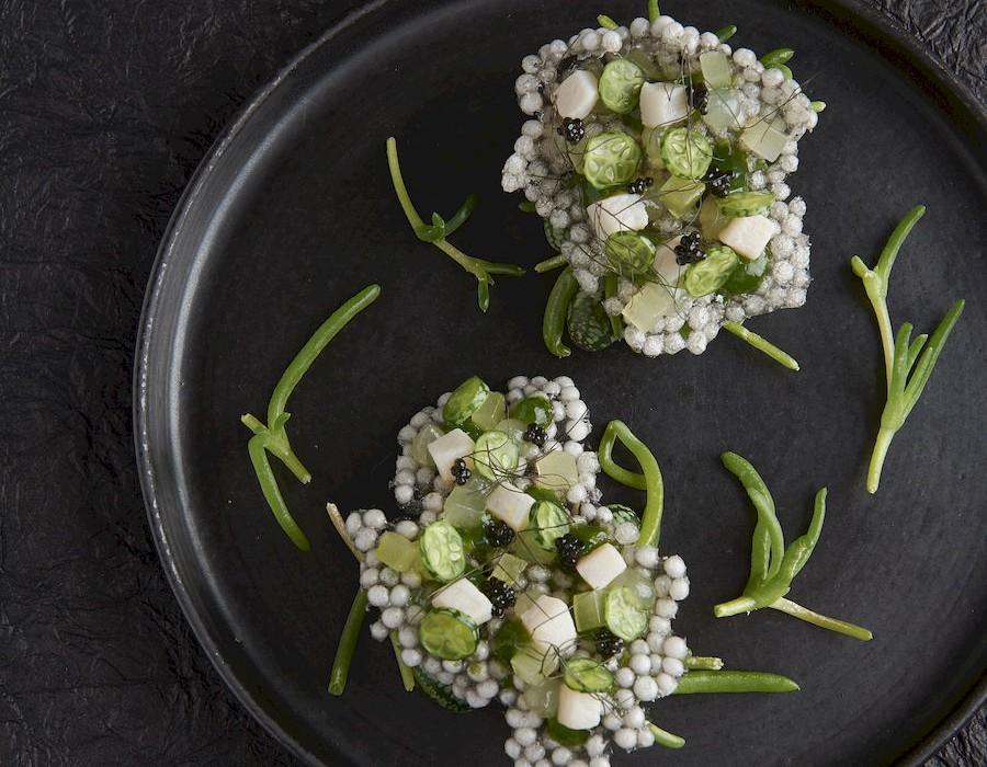 Adam Handling dish - Cracker, mackerel, yuzu, cucumber, ebene caviar