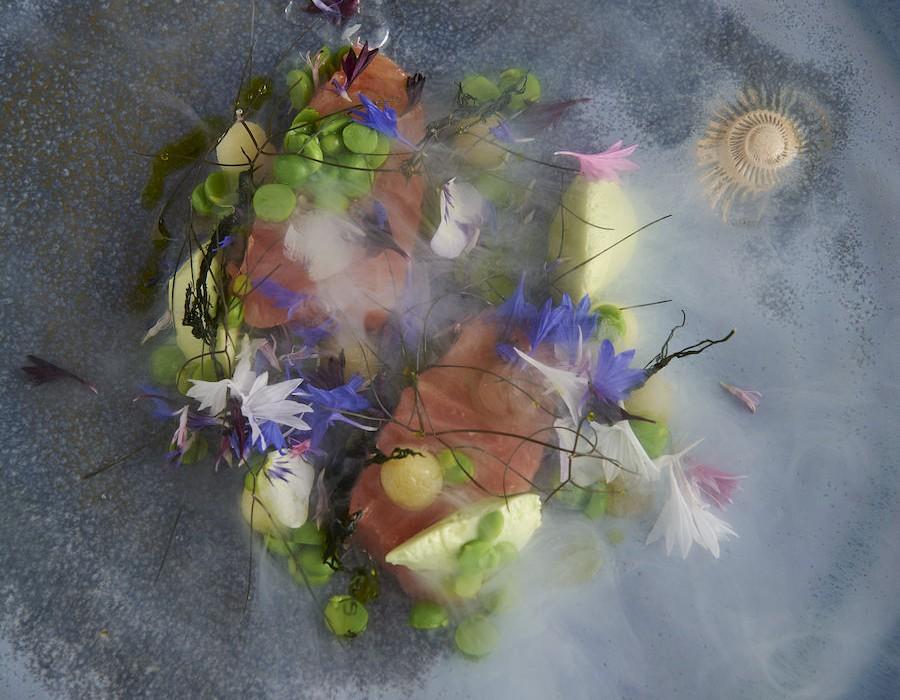 Adam Handling dish - Salmon, fennel pollen, peas, sweet & sour wasabi