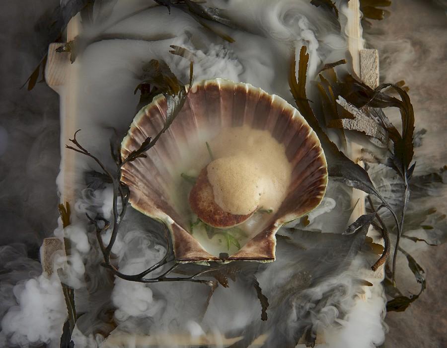 Adam Handling dish - Scallops, crab, lemongrass, sea urchin