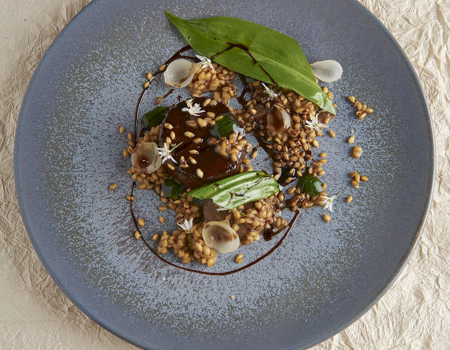 Adam Handling dish - Goat slow cooked, shallots, spelt